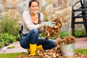 5711795-woman-putting-leaves-gardening-cleaning-bucket-housework